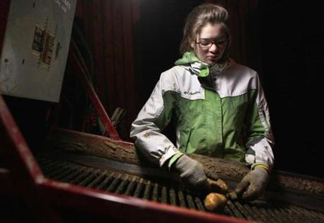 Mapleton, ME 100611 Clarissa Buck (cq), 15, manned the potato sorter inside the storage facility at Buck Farms in Mapleton, ME, Thursday, October 6 2011. (Globe Staff Photo/Wendy Maeda) section: Metro slug: PotatoHarvest reporter: Billy Baker